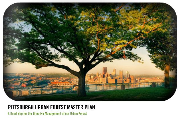 Pittsburgh Urban Forest Master Plan